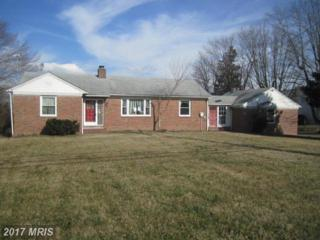2432 Holly Neck Road, Baltimore, MD 21221 (#BC9894751) :: LoCoMusings