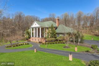 6 Cool Spring Court, Lutherville Timonium, MD 21093 (#BC9895804) :: LoCoMusings