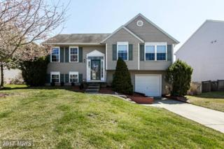 12843 Sand Dollar Way, Baltimore, MD 21220 (#BC9896514) :: Pearson Smith Realty