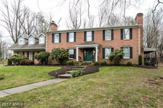 13903 Sunnybrook Road, Phoenix, MD 21131 (#BC9900842) :: Pearson Smith Realty