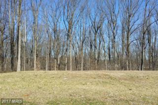 8110 Redstone Road, Kingsville, MD 21087 (#BC9900958) :: Pearson Smith Realty