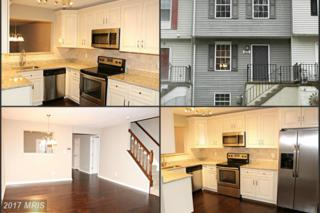631 Nollmeyer Road, Baltimore, MD 21220 (#BC9903386) :: Pearson Smith Realty