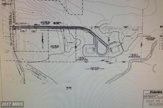 Back River Neck Road, Essex, MD 21221 (#BC9903629) :: Pearson Smith Realty