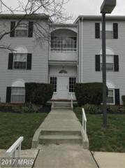 10 Stapleton Court #301, Lutherville Timonium, MD 21093 (#BC9908642) :: Pearson Smith Realty