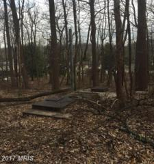 Long Green Road, Glen Arm, MD 21057 (#BC9909736) :: Pearson Smith Realty