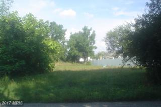 3603 Lilac Avenue, Baltimore, MD 21227 (#BC9911255) :: Pearson Smith Realty