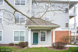 5003 Hollington Drive #201, Owings Mills, MD 21117 (#BC9911484) :: Pearson Smith Realty