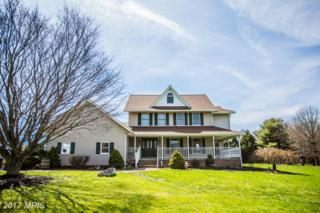 18608 Falls Road, Hampstead, MD 21074 (#BC9911795) :: Pearson Smith Realty