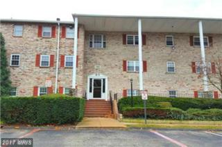11900 Tarragon Road J, Reisterstown, MD 21136 (#BC9912613) :: Pearson Smith Realty
