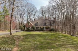 4324 Conifer Court, Glen Arm, MD 21057 (#BC9914524) :: Pearson Smith Realty