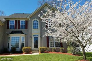 809 Crystal Palace Court, Owings Mills, MD 21117 (#BC9916907) :: Pearson Smith Realty