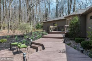 14101 Robcaste Road, Phoenix, MD 21131 (#BC9917000) :: Pearson Smith Realty