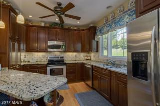 8 Old Granary Court, Catonsville, MD 21228 (#BC9917449) :: Pearson Smith Realty