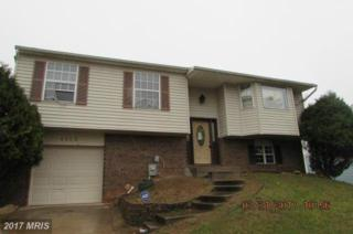 4203 Adrianne Way, Randallstown, MD 21133 (#BC9919853) :: Pearson Smith Realty