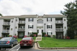 7 Gandson Court #301, Lutherville Timonium, MD 21093 (#BC9923874) :: Pearson Smith Realty