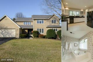 6 Red Maple Court, Owings Mills, MD 21117 (#BC9923973) :: Pearson Smith Realty