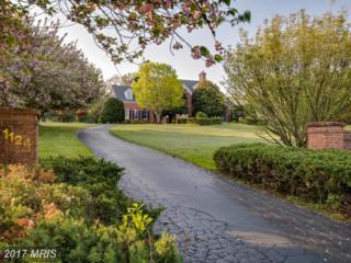 1124 Western Run Road, Cockeysville, MD 21030 (#BC9924128) :: Pearson Smith Realty