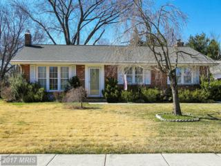 921 Breezewick Circle, Baltimore, MD 21286 (#BC9925105) :: Pearson Smith Realty