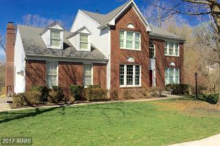 8604 Country Brooke Way, Lutherville Timonium, MD 21093 (#BC9925502) :: Pearson Smith Realty