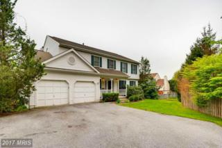 7 High Mill Court, Owings Mills, MD 21117 (#BC9925709) :: Pearson Smith Realty