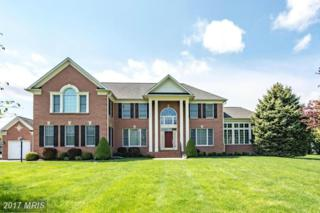 3 Old Manor Court, Reisterstown, MD 21136 (#BC9926169) :: Pearson Smith Realty