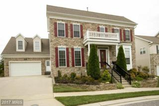 9135 Panorama Drive, Perry Hall, MD 21128 (#BC9927699) :: Pearson Smith Realty