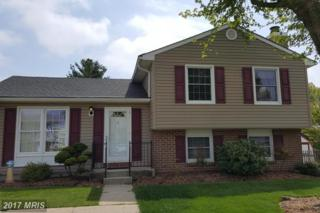 9003 Transoms Road, Baltimore, MD 21236 (#BC9929697) :: Pearson Smith Realty
