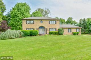 7002 Mount Vista Road, Kingsville, MD 21087 (#BC9931180) :: Pearson Smith Realty