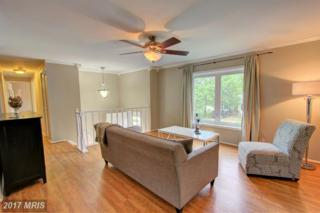 346 Kearney Drive, Owings Mills, MD 21117 (#BC9931811) :: Pearson Smith Realty