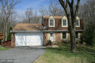 9 Dwelling House Court, Catonsville, MD 21228 (#BC9932304) :: Pearson Smith Realty