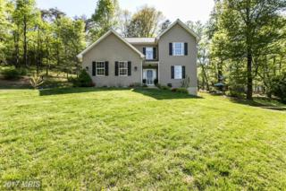 8911-A Dogwood Road, Windsor Mill, MD 21244 (#BC9933118) :: Pearson Smith Realty