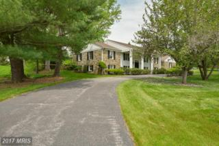402 Chapelwood Lane, Lutherville Timonium, MD 21093 (#BC9933218) :: Pearson Smith Realty