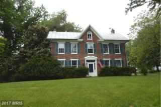 15520 Hanover Pike, Upperco, MD 21155 (#BC9933328) :: Pearson Smith Realty