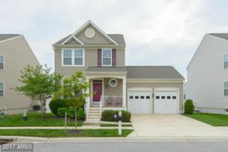 8307 Bufflehead Drive, Baltimore, MD 21222 (#BC9933846) :: Pearson Smith Realty