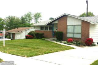 8219 Scotts Level Road, Pikesville, MD 21208 (#BC9934329) :: Pearson Smith Realty