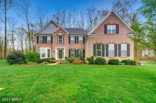 909 Zenith Drive, Freeland, MD 21053 (#BC9934570) :: Pearson Smith Realty