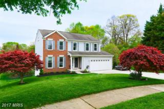 441 Doe Meadow Drive, Owings Mills, MD 21117 (#BC9934791) :: Pearson Smith Realty