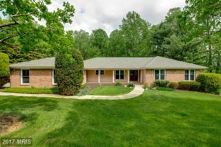 1505 Near Thicket Lane, Stevenson, MD 21153 (#BC9934873) :: Pearson Smith Realty