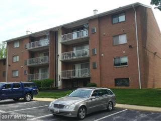 207 Erin Way #203, Reisterstown, MD 21136 (#BC9937377) :: Pearson Smith Realty