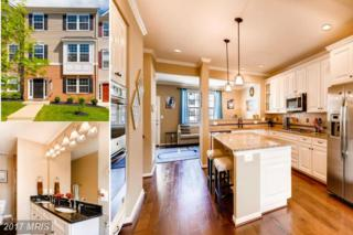 327 Paladium Court, Owings Mills, MD 21117 (#BC9937629) :: Pearson Smith Realty
