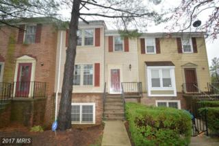 5 Tallow Court 6-13, Windsor Mill, MD 21244 (#BC9937652) :: Pearson Smith Realty