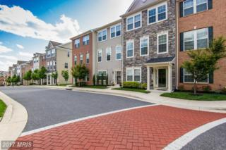 9372 Paragon Way, Owings Mills, MD 21117 (#BC9942380) :: Pearson Smith Realty