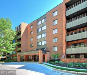 1 Southerly Court #507, Towson, MD 21286 (#BC9950656) :: Pearson Smith Realty