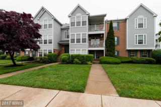 42 Laurel Path Court #2, Baltimore, MD 21236 (#BC9952973) :: Pearson Smith Realty