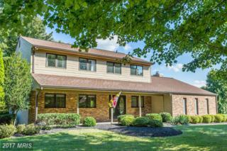 12417 Knollcrest Road, Reisterstown, MD 21136 (#BC9952975) :: Pearson Smith Realty