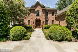 2600 Chestnut Woods Court Court, Reisterstown, MD 21136 (#BC9954457) :: Pearson Smith Realty