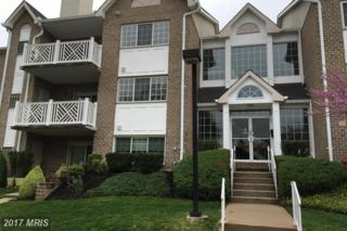 4 Bandon Court #201, Lutherville Timonium, MD 21093 (#BC9955645) :: Pearson Smith Realty