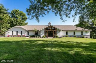 2 Brook Farm Court, Cockeysville, MD 21030 (#BC9956015) :: Pearson Smith Realty