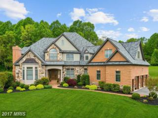 3718 Blenheim Road, Phoenix, MD 21131 (#BC9956884) :: Pearson Smith Realty