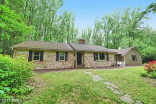 6 Winterberry Court, Glen Arm, MD 21057 (#BC9957953) :: Pearson Smith Realty